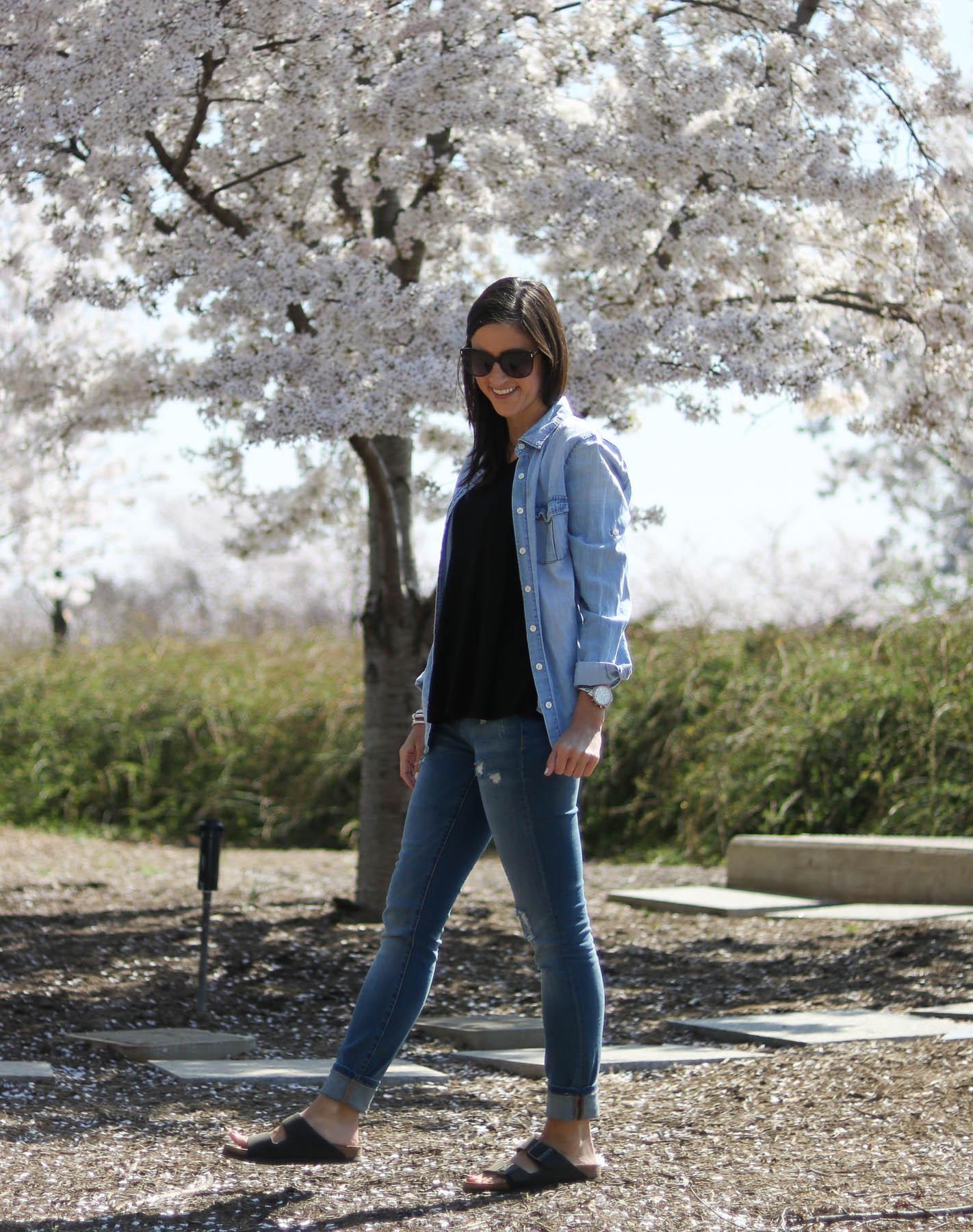 Cherry Blossom Stroll