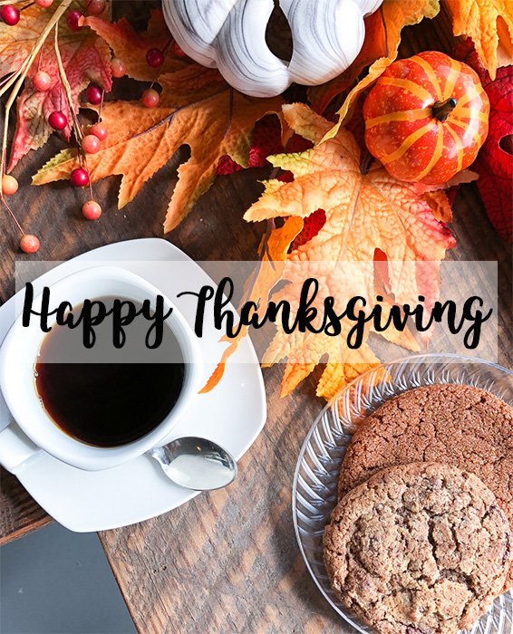 Happy Thanksgiving + 5 Things I'm Thankful for This Year